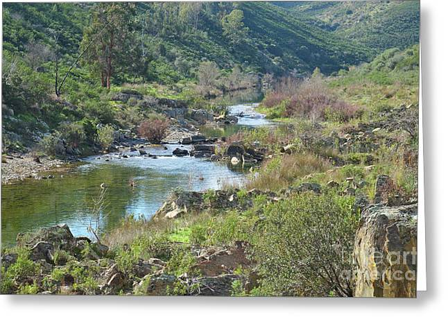 Portugal Greeting Cards - River crossing the valleys Greeting Card by Angelo DeVal