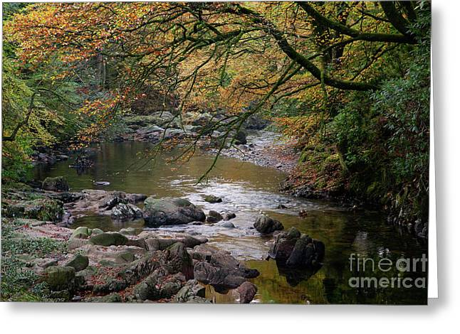 River Esk In Autumn Greeting Card by Gavin Dronfield