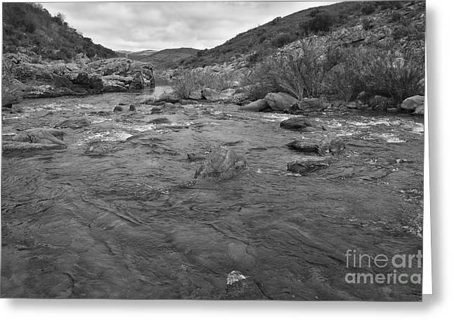 Europe Greeting Cards - River Flow Greeting Card by Angelo DeVal