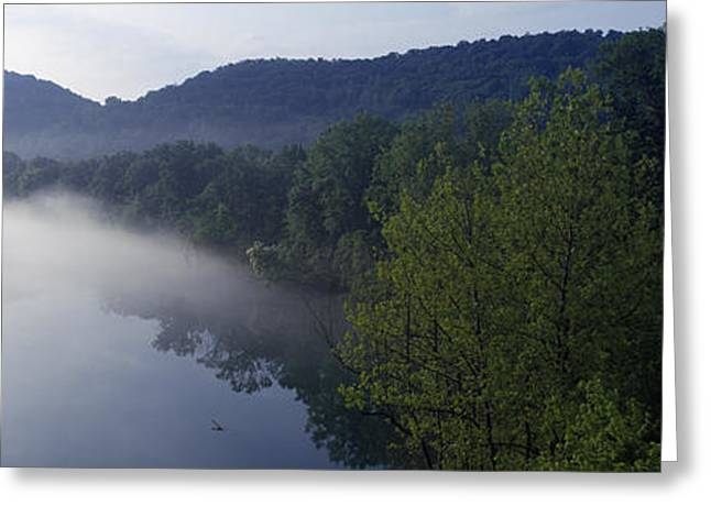 Woodland Scenes Greeting Cards - River Flowing In A Forest Greeting Card by Panoramic Images