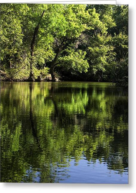 Woodland Scenes Greeting Cards - River In The Mountain Greeting Card by Radoslav Nedelchev