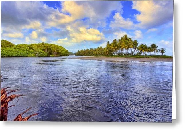 Mangrove Forest Greeting Cards - River Island Greeting Card by Nadia Sanowar