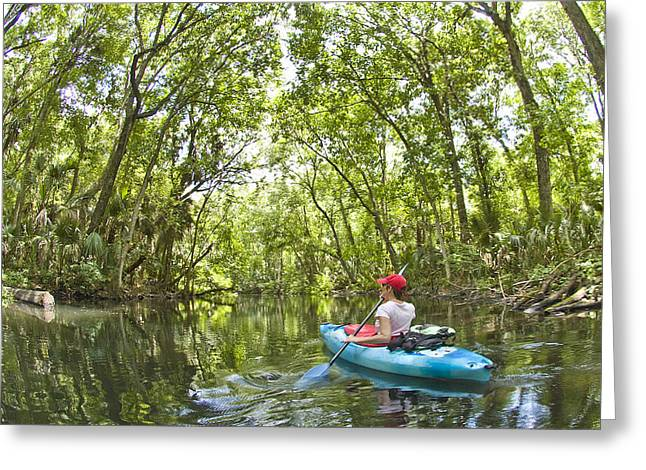 Kayak Greeting Cards - River Kayak Greeting Card by Steve Williams