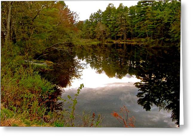 Trees Reflecting In Water Greeting Cards - River Reflections Greeting Card by Elizabeth Tillar