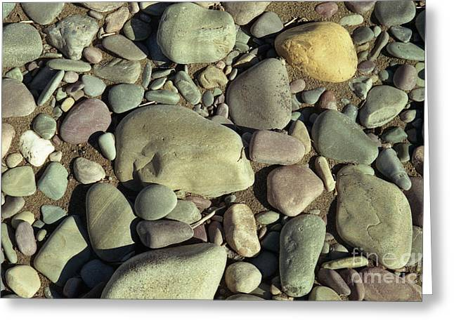 Richard Rizzo Greeting Cards - River Rock Greeting Card by Richard Rizzo