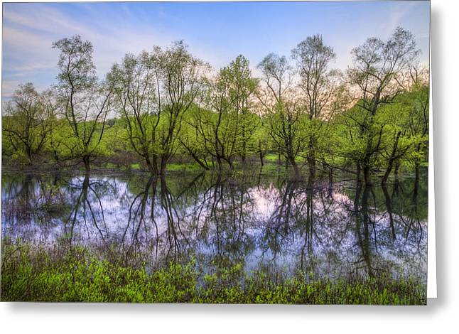 Meadow Willows Greeting Cards - River Sentinels Greeting Card by Debra and Dave Vanderlaan