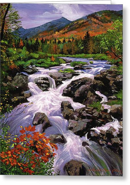 Rapid Paintings Greeting Cards - RIver Sounds Greeting Card by David Lloyd Glover