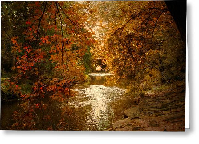 Stream Digital Greeting Cards - Riverbank Light Greeting Card by Jessica Jenney