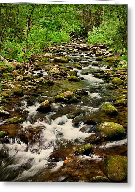 Gatlinburg Tennessee Greeting Cards - RiverRock Greeting Card by Dave Bosse