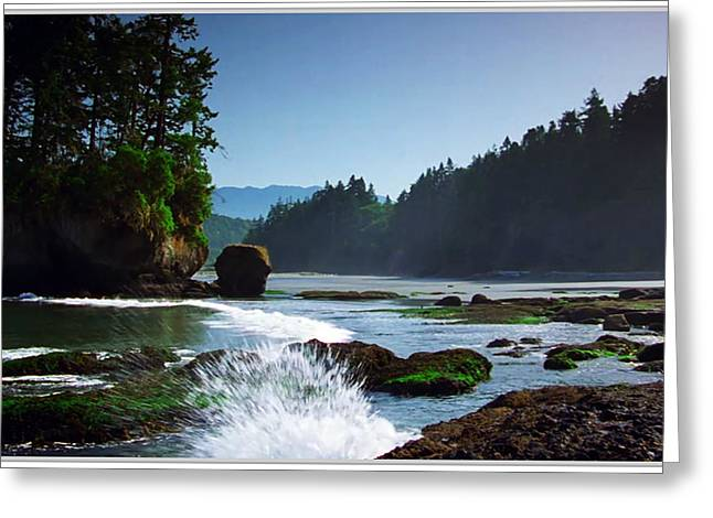 Blue Green Water Greeting Cards - Rivers and Lakes around Olympic National Park America Greeting Card by Navin Joshi
