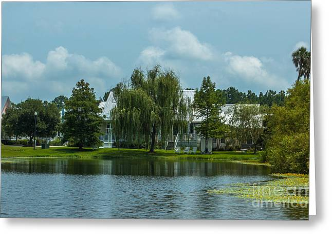Willow Lake Greeting Cards - Rivertowne Pond Greeting Card by Dale Powell