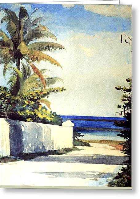 Water Color Artist Greeting Cards - Road In Nassau Greeting Card by Winslow Homer