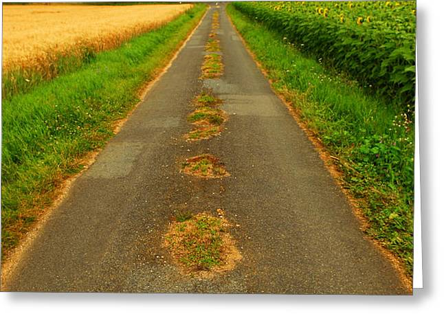 Road in rural France Greeting Card by Elena Elisseeva