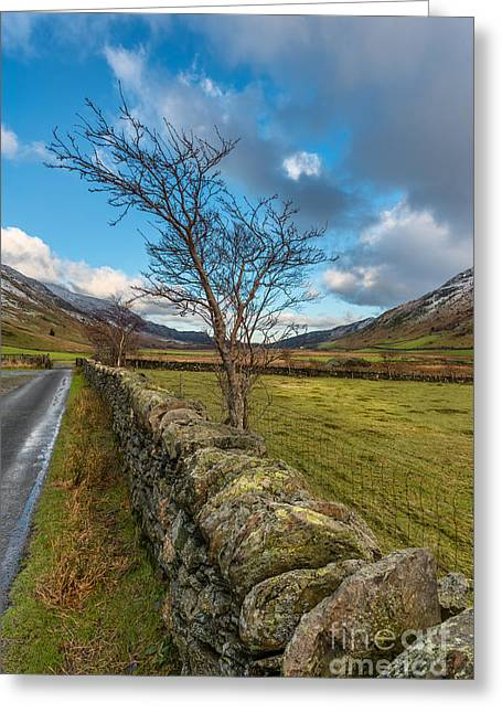 Road Less Travelled Greeting Card by Adrian Evans