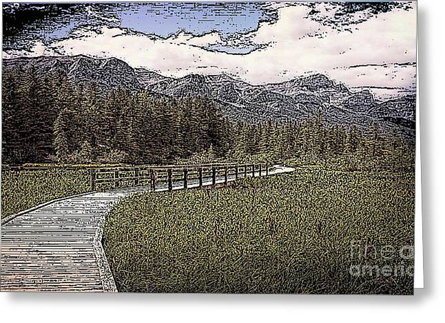 Road Over The Marsh Greeting Card by Rod Jellison
