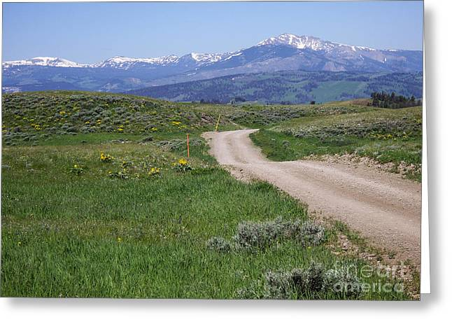 Testament Greeting Cards - Road to Big Sandy in Wyoming Greeting Card by Barbara Dalton