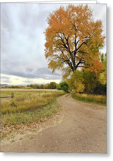 Fort Collins Photographs Greeting Cards - Road To Dads Place Greeting Card by James Steele