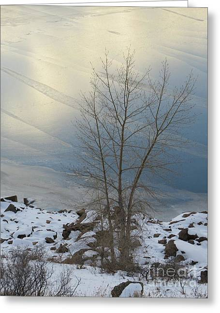 Road To Horsetooth 1 Greeting Card by Diane M Dittus