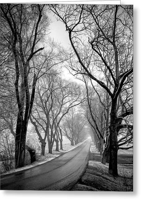 Road To Meems Bottom Bridge Greeting Card by Williams-Cairns Photography LLC