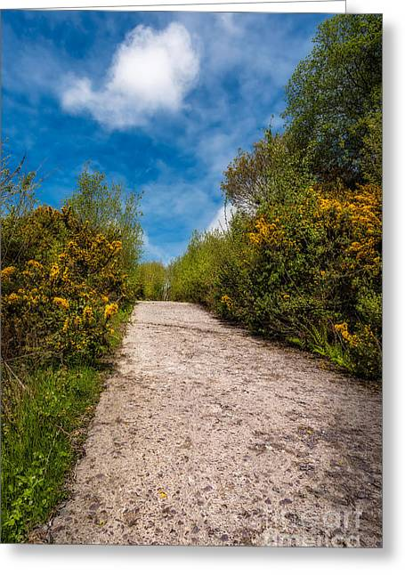 Bush Greeting Cards - Road To Nowhere Greeting Card by Adrian Evans