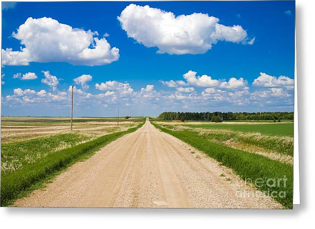Nowhere Greeting Cards - Road to Nowhere Greeting Card by Bob Mintie