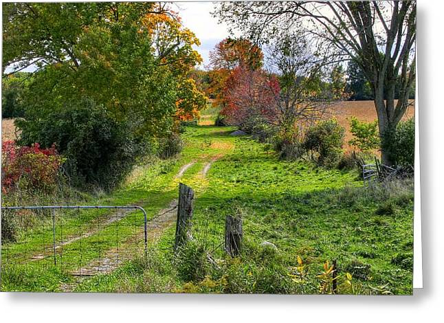 Road To Nowhere Greeting Card by David  Hubbs