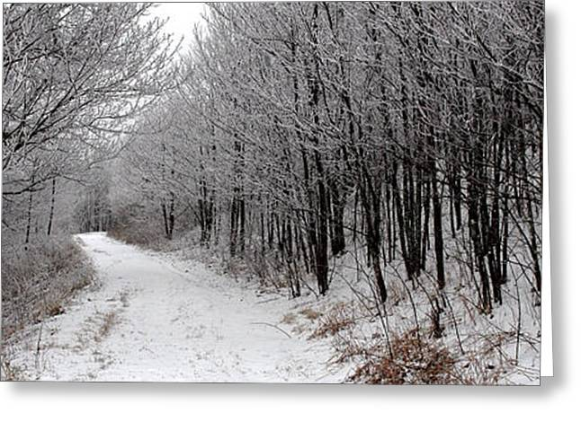 Snow Scenes Greeting Cards - Road to Snow Where Greeting Card by Alan Lenk
