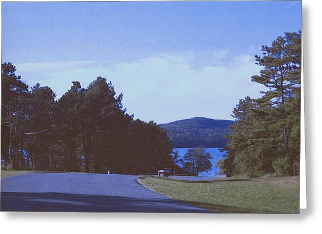 Willow Lake Greeting Cards - Road to the Lake Greeting Card by James Bologna