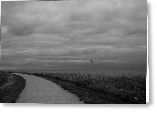 Marko Mitic Greeting Cards - Road To The Left Black and White Greeting Card by Marko Mitic