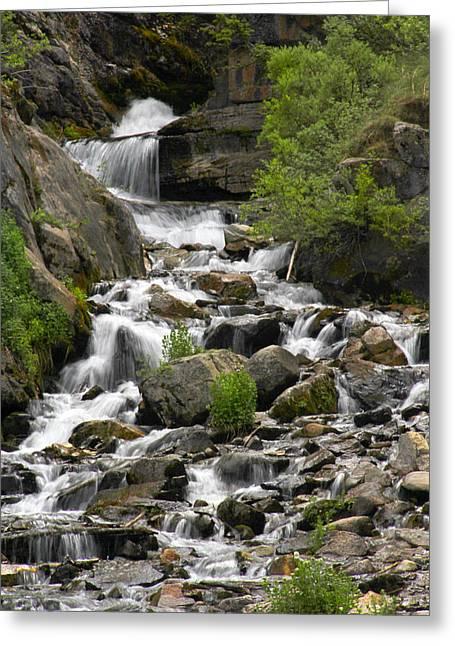 Stream Digital Art Greeting Cards - Roadside Mountain Stream Greeting Card by Mike McGlothlen