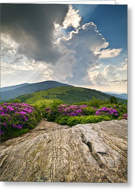 Appalachian Trail Greeting Cards - Roan Mountain Rays- Blue Ridge Mountains Landscape WNC Greeting Card by Dave Allen