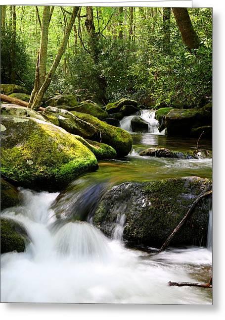 Gatlinburg Tennessee Greeting Cards - Roaring Fork Motor Trail Waters Greeting Card by Carol R Montoya