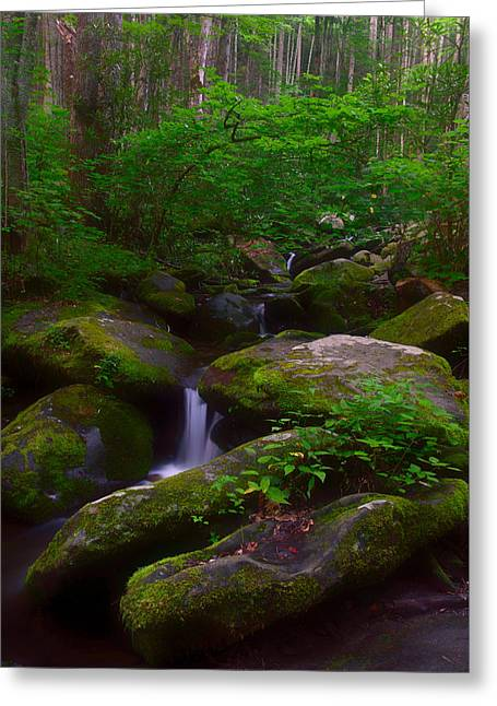 Gatlinburg Tennessee Greeting Cards - Roaring Fork Tumble Greeting Card by Charlie Choc