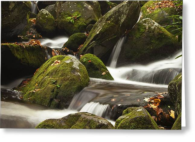 North Fork Greeting Cards - Roaring Fork Waterfall Greeting Card by Andrew Soundarajan