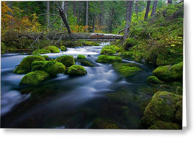 Roaring Falls Greeting Cards - Roaring River Greeting Card by Randall Ingalls