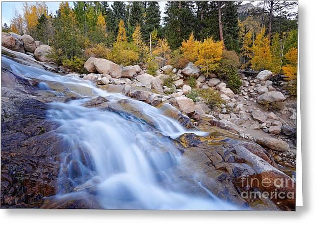 Roaring River Waterfalls At Alluvial Fan - Rocky Mountain National Park - Estes Park Colorado Greeting Card by Silvio Ligutti