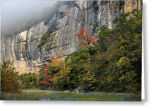 Arkansas Greeting Cards - Roarks Bluff 2 Greeting Card by James Barber