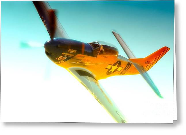 Reno Air Races Greeting Cards - Robert Patterson and TF-51D Mustang Lady Jo 2010 Reno Air Races Greeting Card by Gus McCrea
