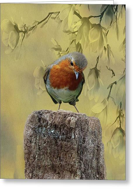 Robin Bird Greeting Card by Movie Poster Prints