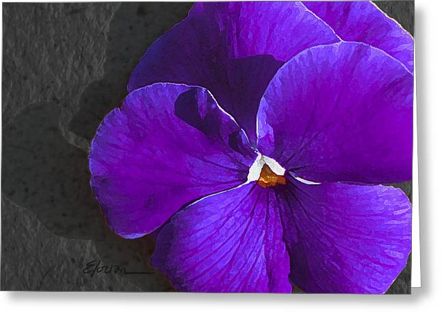 Robin's Pansy Three Greeting Card by Elorian Landers