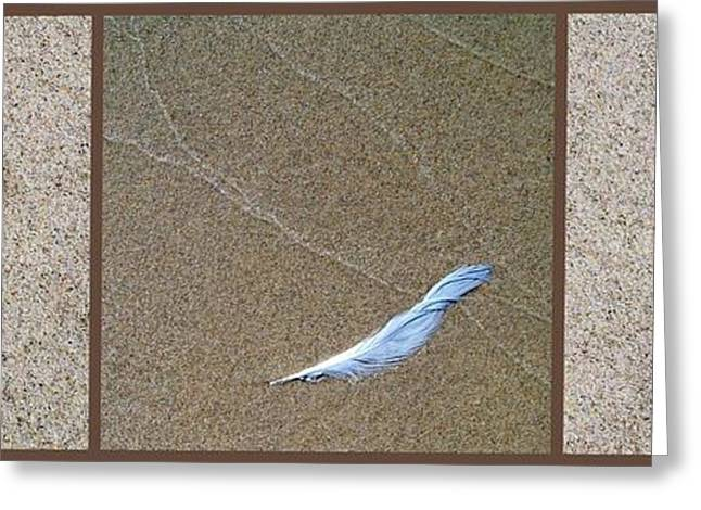 Sand Patterns Greeting Cards - Rock Feather Glass Greeting Card by Michelle Calkins