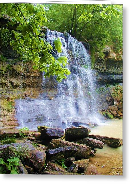 Greeting Card featuring the photograph Rock Glen by Rodney Campbell