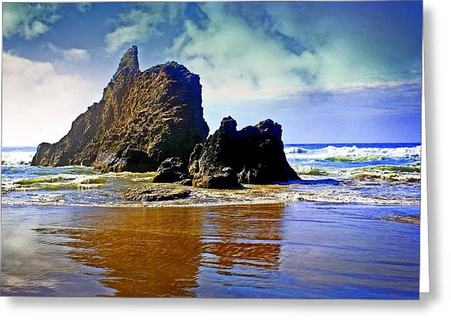 Marty Koch Greeting Cards - Rock on Beach Greeting Card by Marty Koch