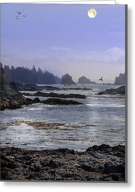 Reflecting Water Greeting Cards - Rocks and Moon and Water Greeting Card by Barry Weiss