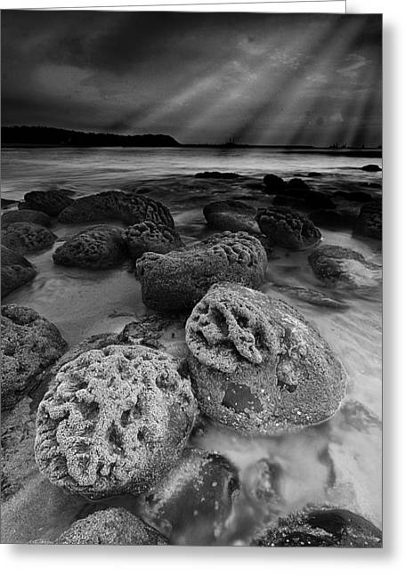 Strong Composition Greeting Cards - Rocks and Rays Greeting Card by Sydney Alvares