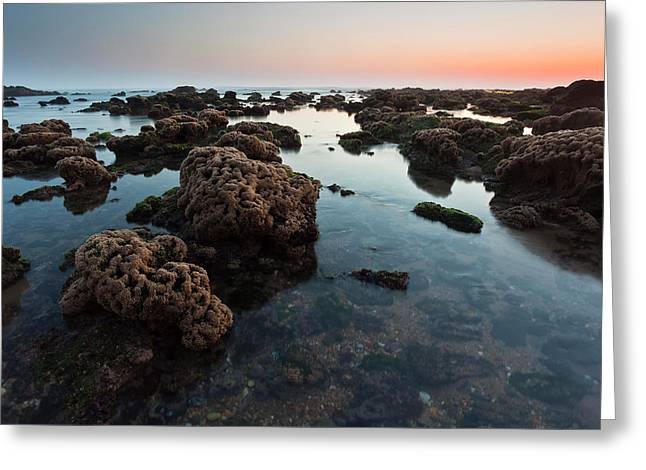 Por Greeting Cards - Rocks at sunset Greeting Card by Mauricio Reis