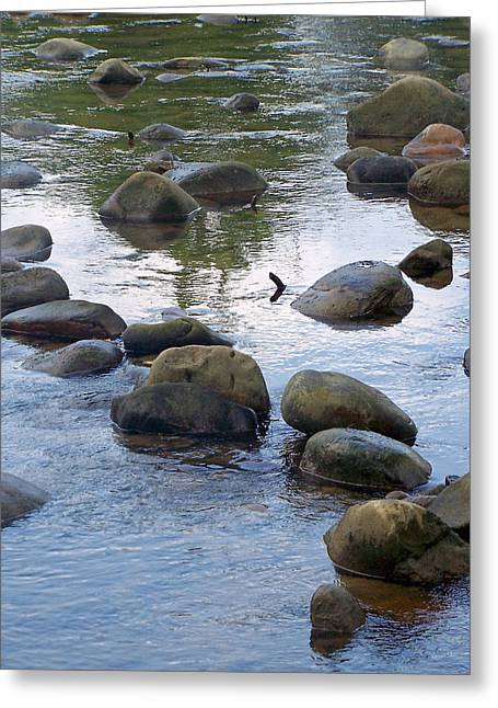 Patricia Taylor Greeting Cards - Rocks in Blue Water Greeting Card by Patricia Taylor