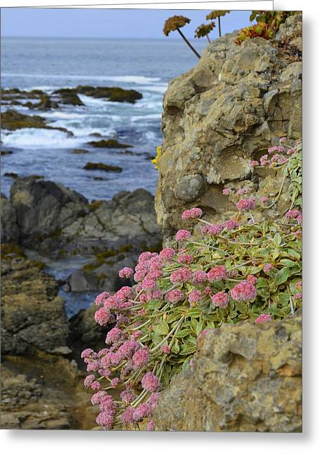 Rocky Cliff On California Coast Greeting Card by Carla Parris