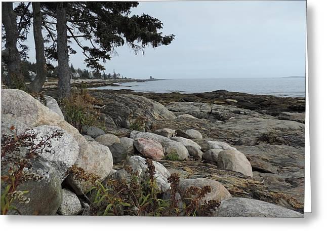Maine Beach Greeting Cards - Rocky Coastline of Maine Greeting Card by Bill Tomsa