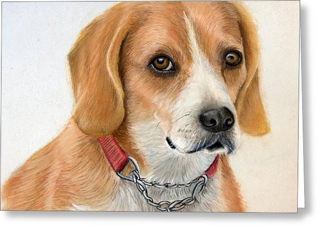 Rocky Greeting Card by Mary Mayes